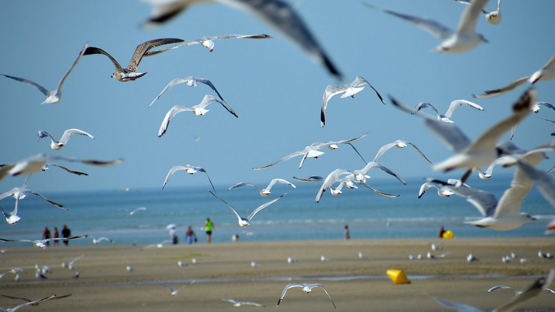 le-bord-mer-une-destination-ideale-en-toute-saison.png