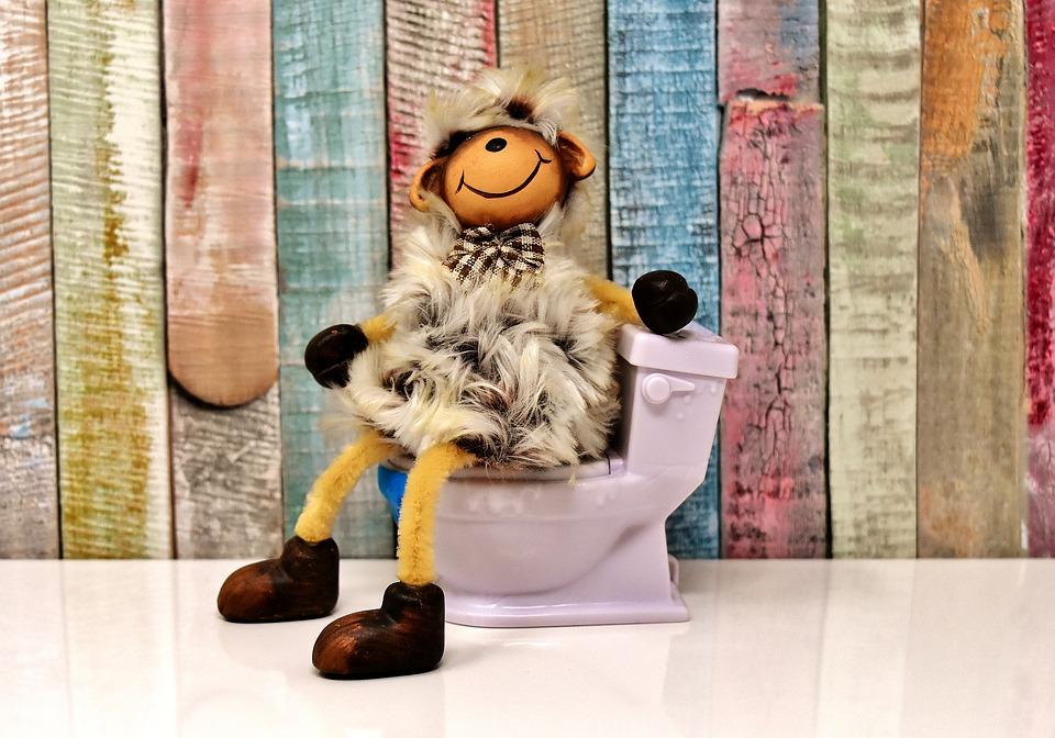 toilet-3298222_960_720