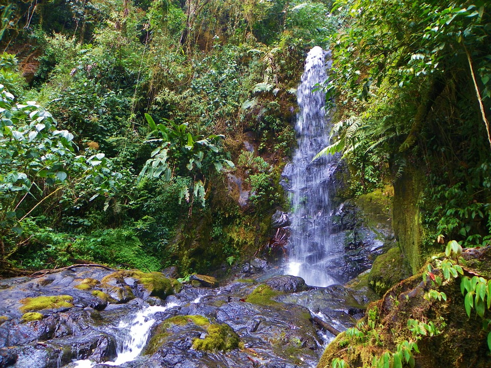 Chute d'eau à La Amistad, Costa Rica